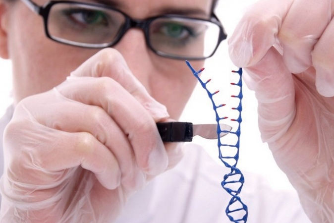 science processes and scientists in the essay aging genes Harvard scientists reverse the ageing process in mice science correspondent new genetic test can predict your chances of living to 100.