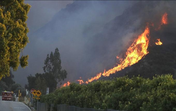Помощь жертвам пожара